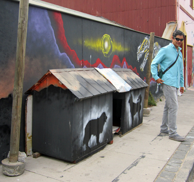 """These dogs might not have """"real"""" homes, but here and there you'll find these community dog houses, and that's where some of the lucky street dogs get to stay. A stray dog could do worse!"""