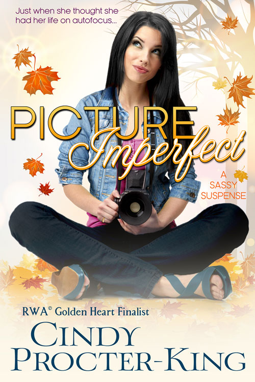 Picture Imperfect eBook Cover Large