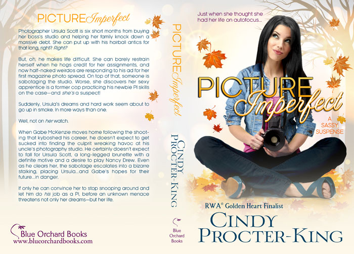 Picture Imperfect Paperback Cover